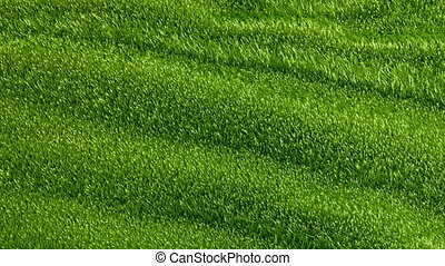Slowly waving grassy background, seamless looped 3d...