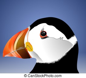 Puffin - A puffin bird on a blue background
