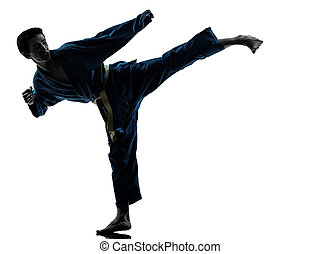 karate vietvodao martial arts man silhouette - one asian...