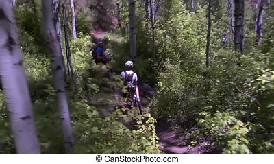 Mountain bikers pedal down steep wooded trail