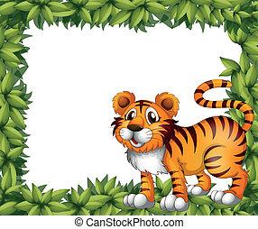 A tiger in green frame