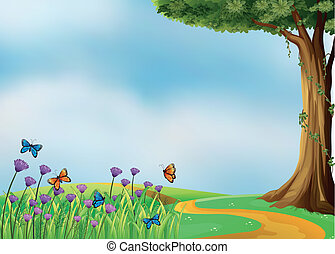 Butterflies and a beautiful nature - Illustration of...