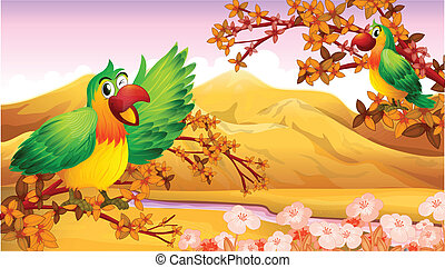 Parrots in an autumn scenery