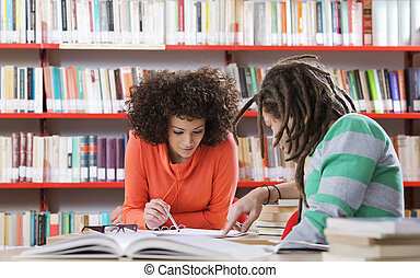 Working together - Two students learning together indoors in...