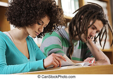 Intensive Learning - Two students learning together indoors...