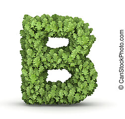 Letter B from green leaves - Letter B from fresh green oak...