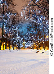 Illuminated snowy avenue at night - Snowy avenue with...