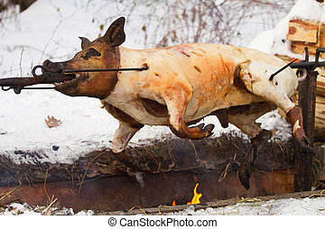 Pig roasted on a fire