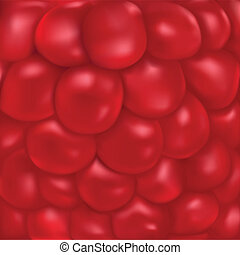 Raspberry vector texture - Graphic raspberry texture, highly...