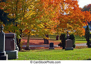 Colorful autumn trees on King city cemetery