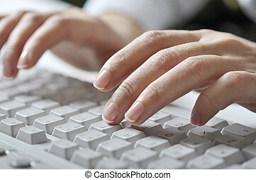 typing female hands - Close-up of typing female hands on...