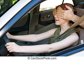 Driving Blind
