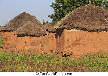 Mud huts and goat scratching himself against the wall