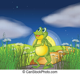 A frog looking at the bright star - Illustration of a frog...