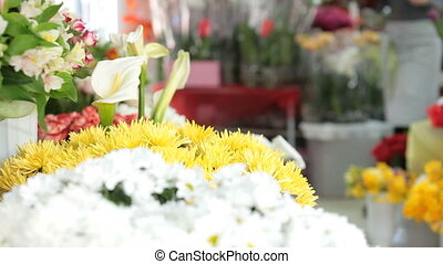 Flower Shop - Large array of flowers in floristry shop, in...
