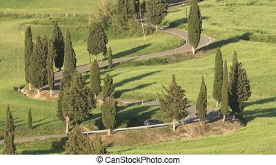 Winding Cypress Lane - Winding road near Monticchiello in...