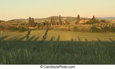 Sunset in Tuscany - Val d'Orcia in the province of Siena in...