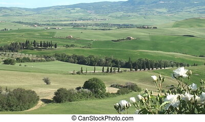 Tuscan landscape - Typical landscape of the Val d'Orcia in...