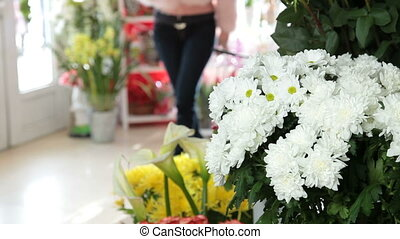 Chrysanthemums In Flower Shop - Chrysanthemums in flower...