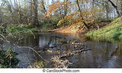 river water flow autumn - little park river water flow...