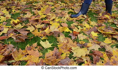 woman boot autumn leaf