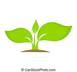Young plant seedling growing in soil. Vector illustration