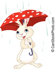 Bunny under umbrella - Cute little bunny under umbrella
