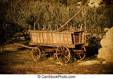 Old wagon and olive trees