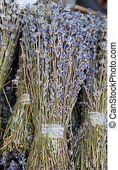 dried lavender - Bunch of dried lavender flowers