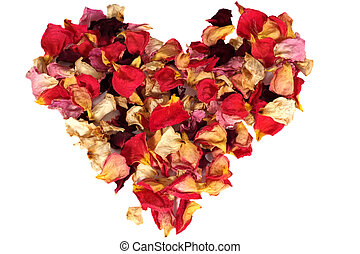Dry rose petals heart on white background