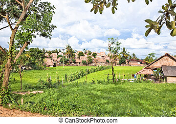 Sade-Traditional Lombok old village - Sade- Traditional...