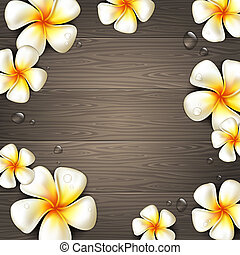 Tropical flowers - Frangipani tropical flowers and water...