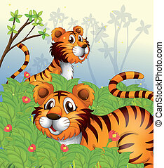 Tigers in the woods - Illustration of tigers in the woods
