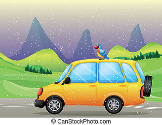 A car with a parrot