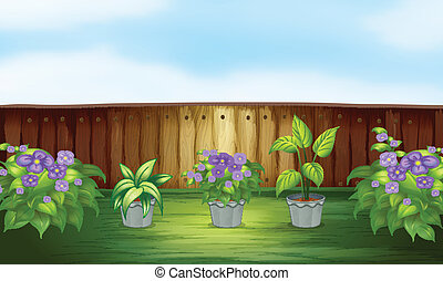 Plants in the backyard - Illustration of plants in the...