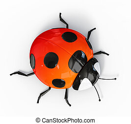 ladybird - red ladybird isolated on a white background