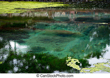 Balinese holy spring in Tirta Empul temple - Water welling...