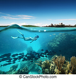 Young woman snorkeling in the coral reef in the tropical...