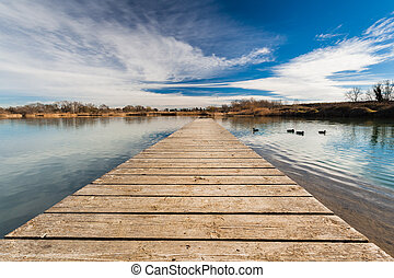 Pond Pontoon - A duck pond view from a wood pontoon with...