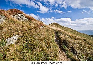 Landscape in Carpathians mountains