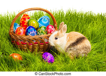 Easter egg and bunny in basket - Easter basket with egg and...