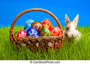 Easter egg and bunny in basket - Easter egg and baby bunny...