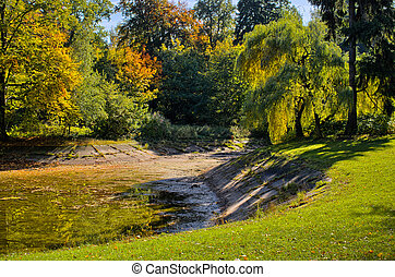 Park with pond during autumn