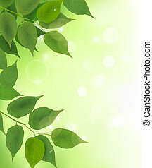 Nature background with fresh green leaves
