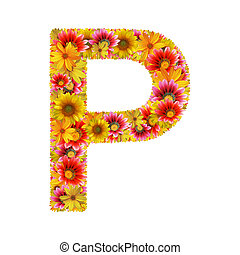flowers letter P - Letter P created of flowers isolated on...