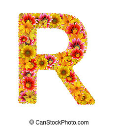 flowers letter R - Letter R created of flowers isolated on...