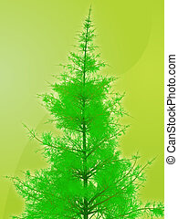 Pine tree illustration - Illustration of pine tree, rendered...