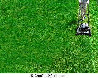 Mowing Lawn Grass - Young Girl Mowing green grass lawn with...