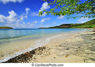 Tropical Beach - Beautiful tropical Tamarindo Beach on the...