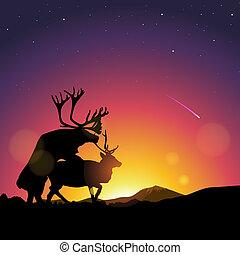Silhouette of deers copulate